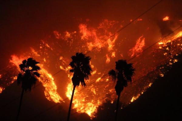 Calif-governor-declares-emergency-as-50K-acre-wildfire-grows-near-LA.jpg