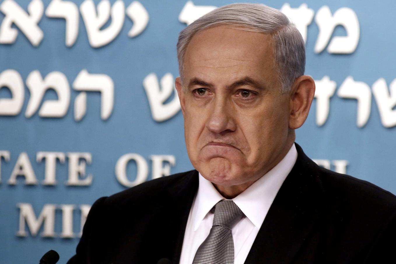 King-Bibi --.jpg