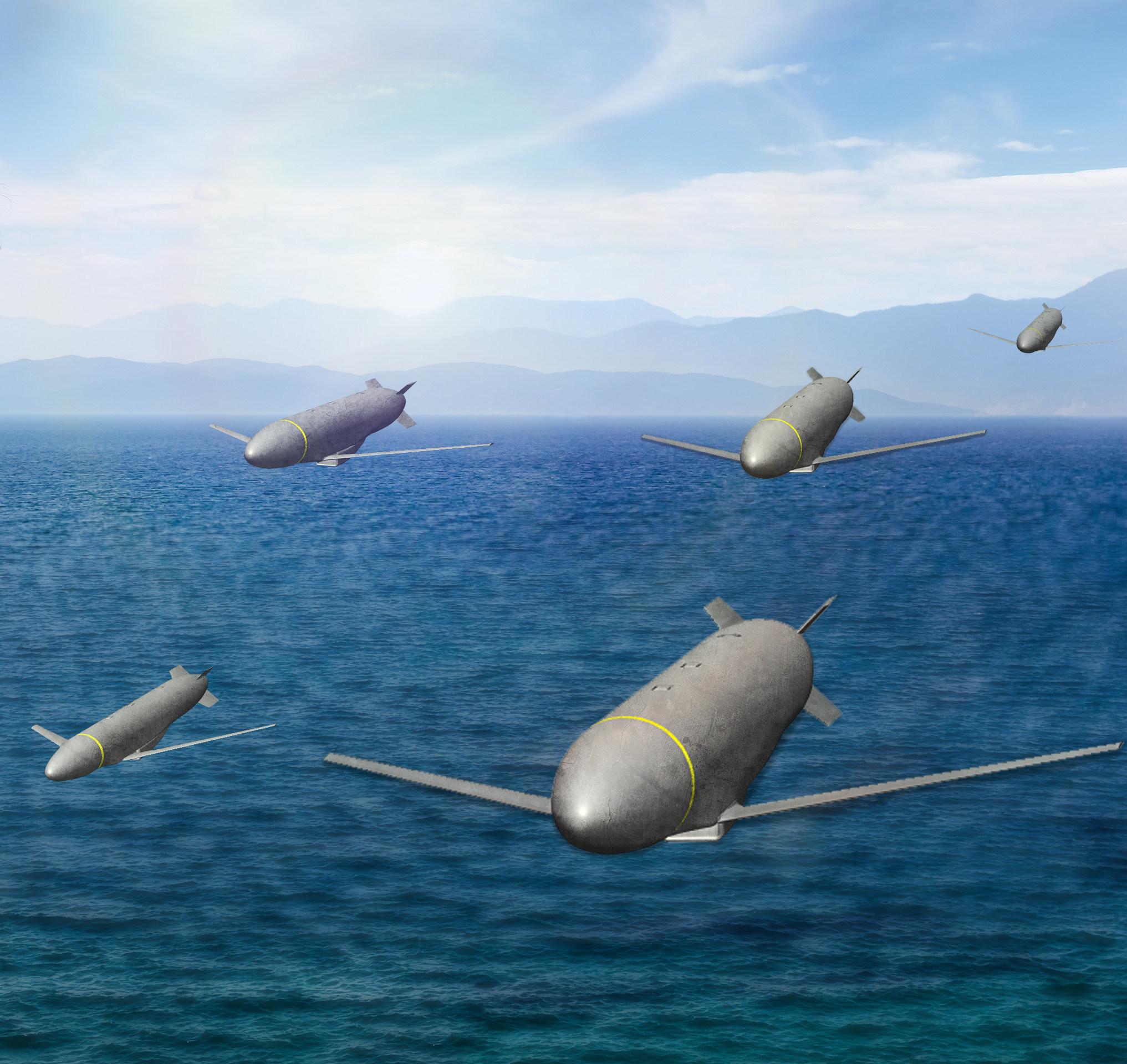 Lockheed_Martin_Gray_Wolf.jpg